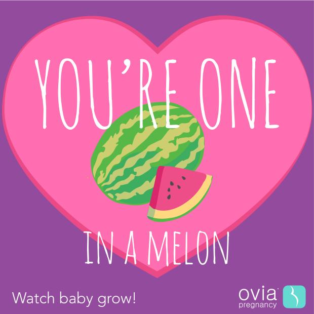 watermelon-2-13-17